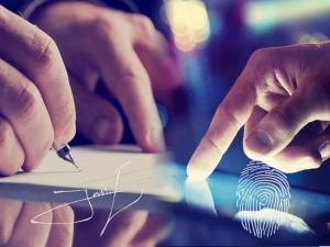 Verificación de Firmas y Huellas Dactilares