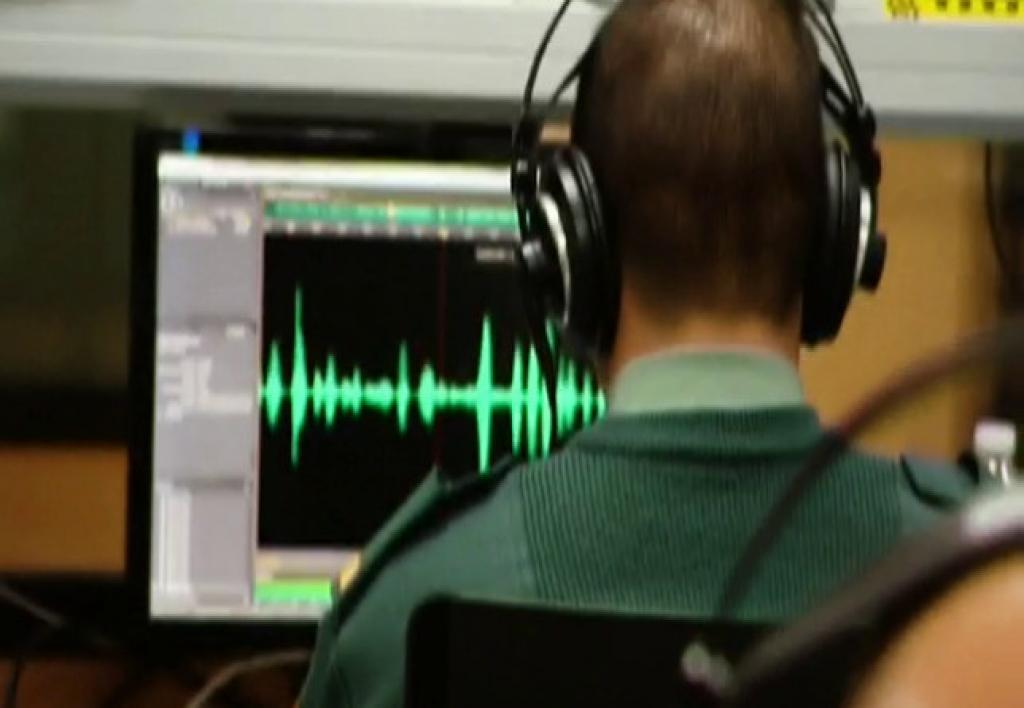 Perito en Acústica y Audiología Forense