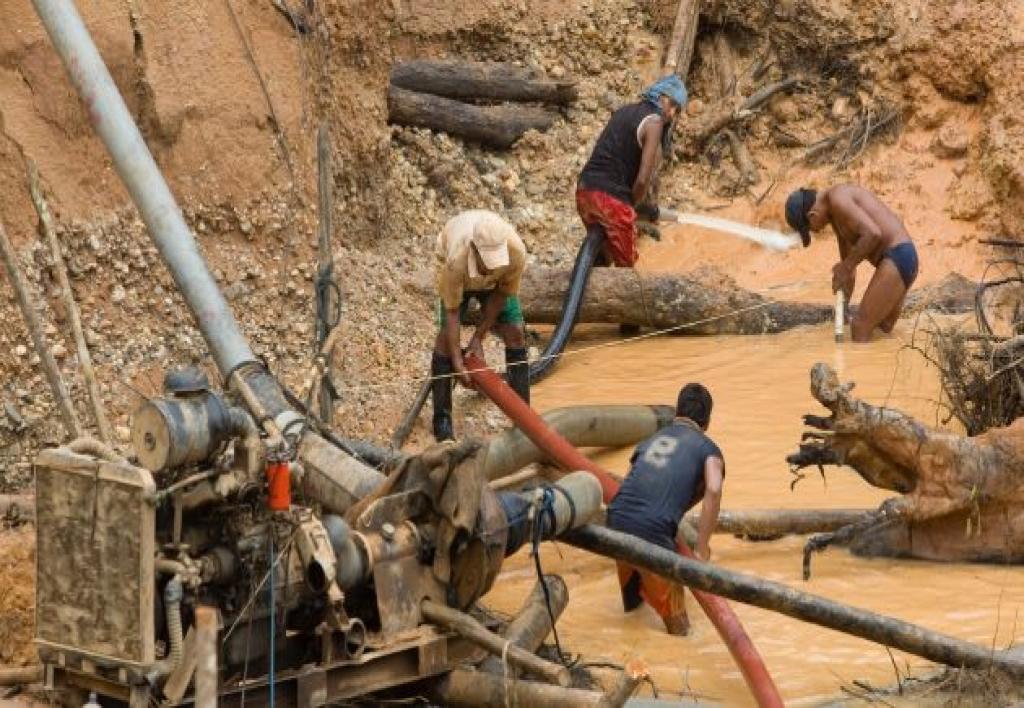 Investigacion de Delitos Ambientales y Minería Ilegal