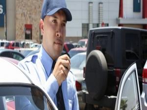 Supervisor de Seguridad Integral