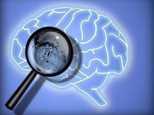 Perito en Psicología Forense