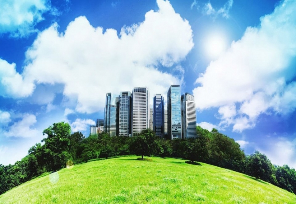 Derecho Ambiental: Política y Gestión Ambiental