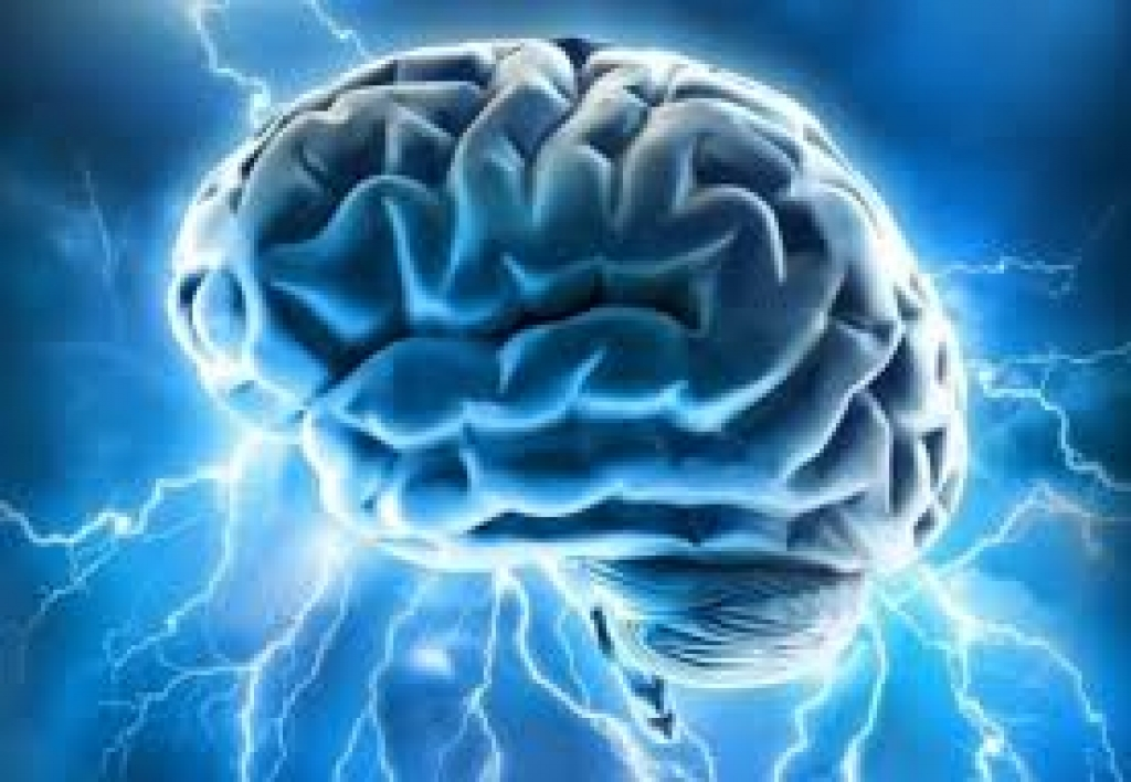 Neuropsicoeducador